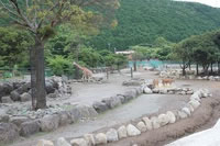 Izu Animal Kingdom