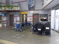 Rental wheelchair in Flower Park Kagoshima